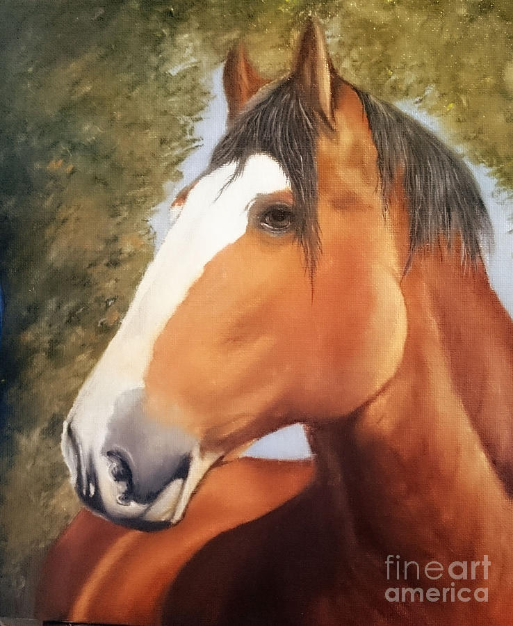 Horse Painting - Horsing Around by Adrian Jones