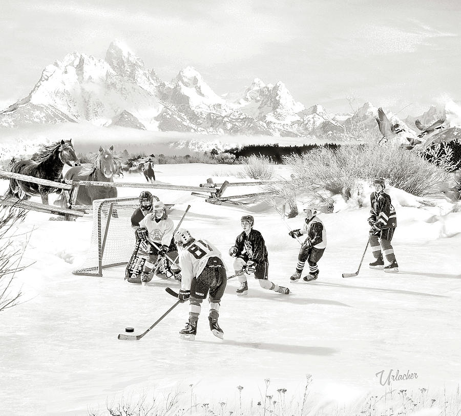 Horsing Around in the Rockies by Elizabeth Urlacher