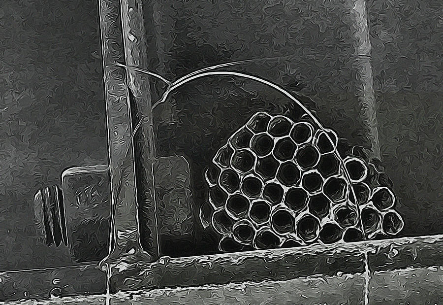 Wasp Photograph - Hostel by Wendy J St Christopher