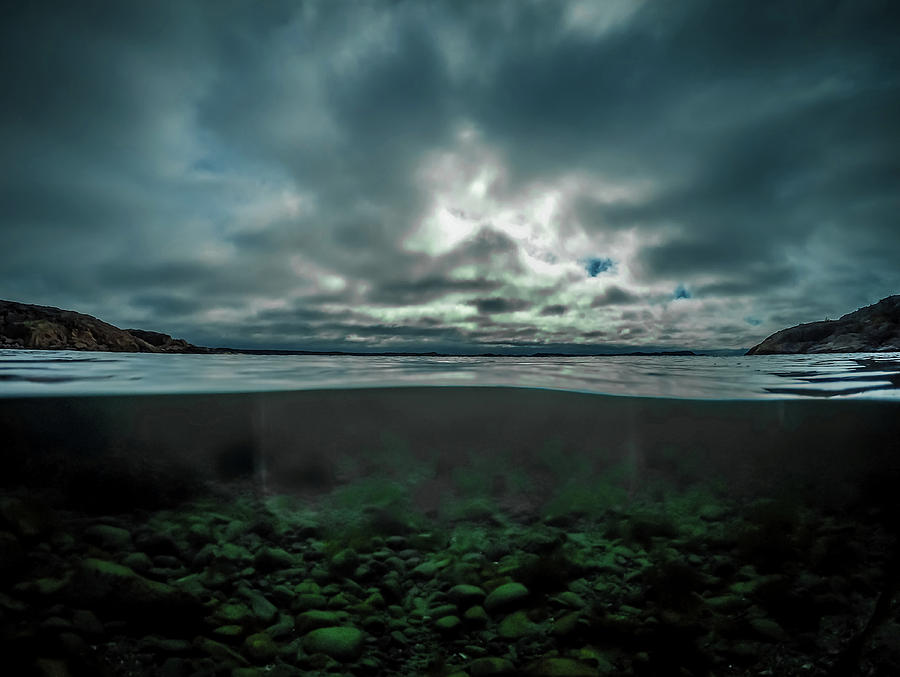 Underwater Photograph - Hostsaga - Autumn tale by Nicklas Gustafsson