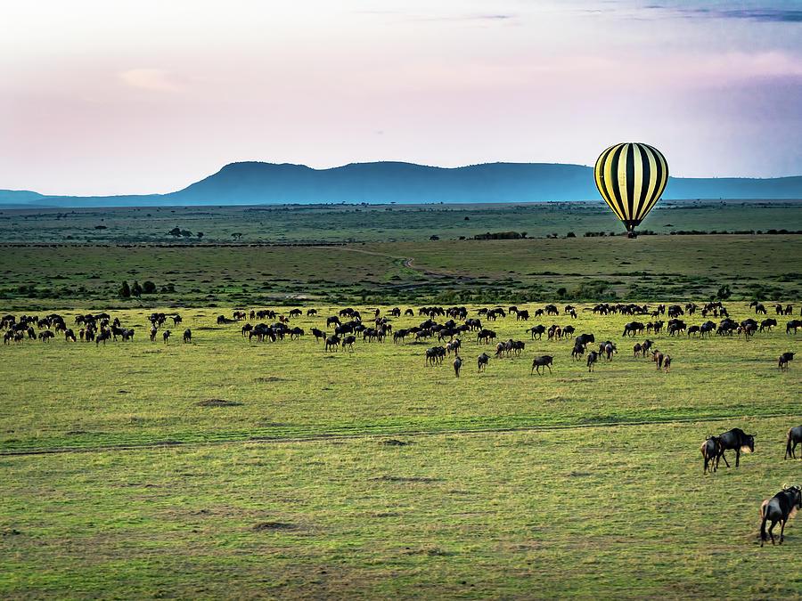 Hot Air Balloon Over Serengeti Photograph by Robin Zygelman