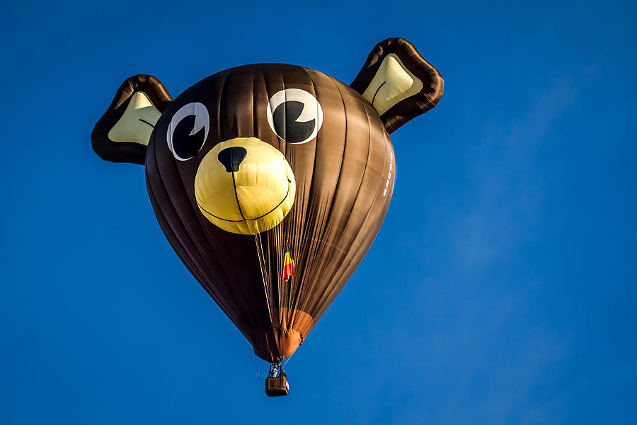 Image result for Hot bear balloon