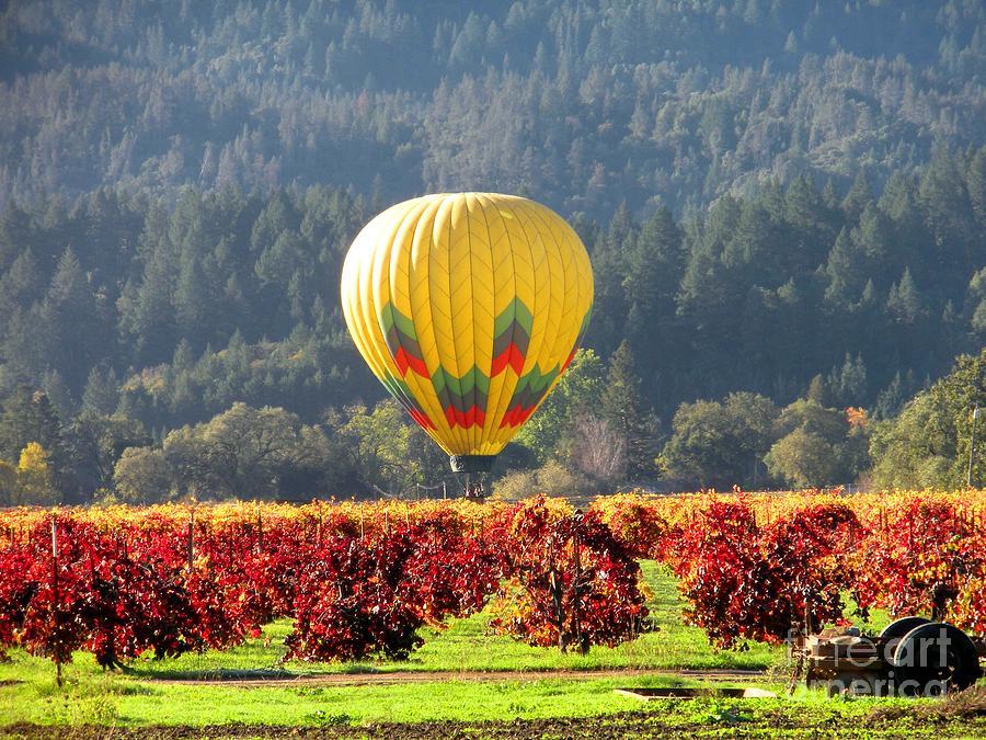 Hot Air Balloon Photograph - Hot Air In The Valley by Gail Salituri