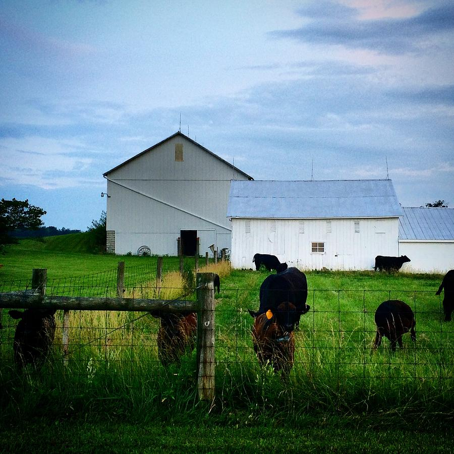 Summer Photograph - Hot Eve Night On The Farm by Ranchers Eye Photography