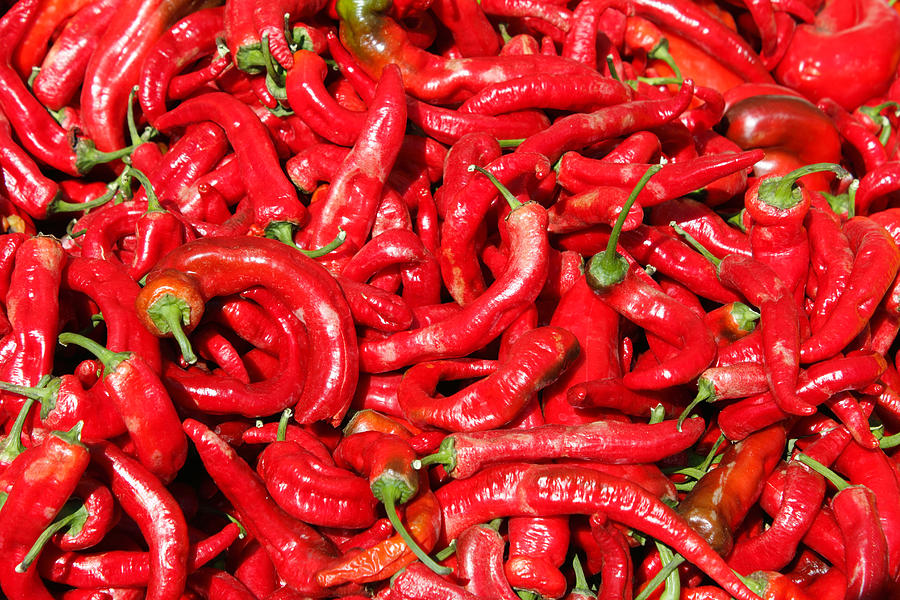 Hot Photograph - Hot Red Peppers In The Summer Sun by Lee Serenethos