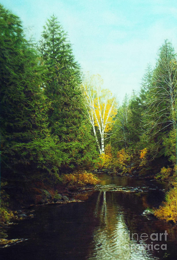Algonquin Park Drawing - Hourglass Light by Susan Fraser SCA  B Sc