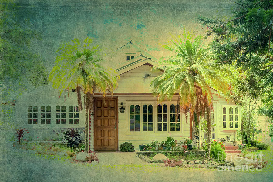 House Behind Two Palm Trees Photograph