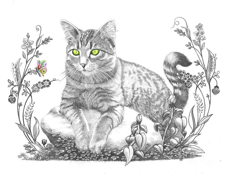 Cat Drawing - House Cat by Murphy Elliott