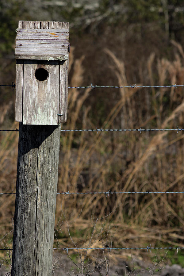 Birdhouse Photograph - House On A Crooked Fence Post by By Way of Karma