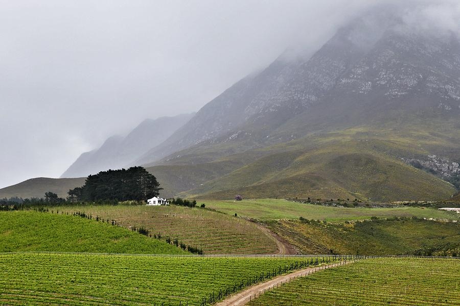 Hermanus Photograph - House On A Hill In The Mist by Jeremy Hayden