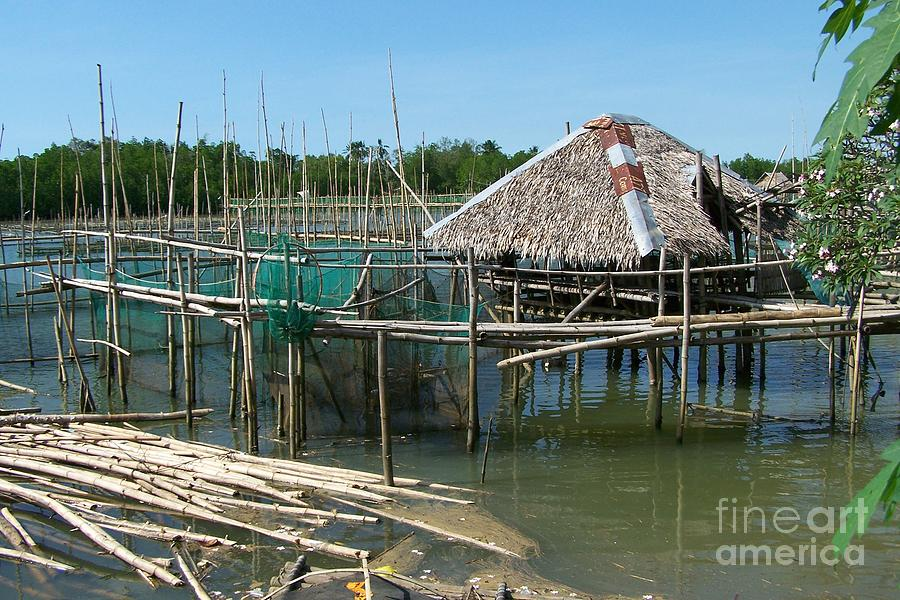 Oyster Photograph - House On Stilts by Dindin Coscolluela