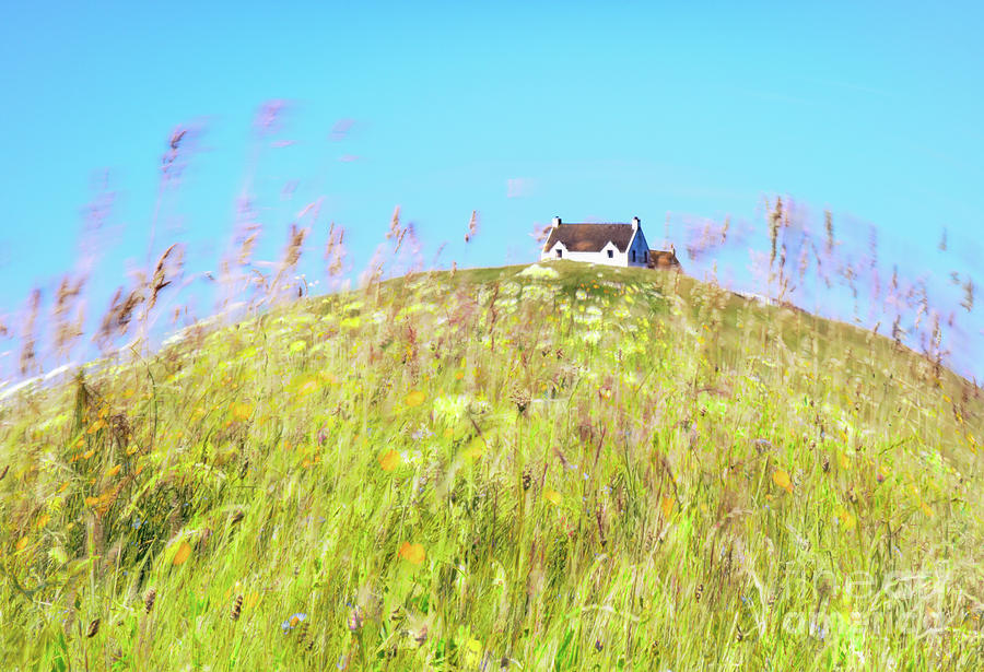 Meadow Photograph - House On The Hill by Janet Burdon