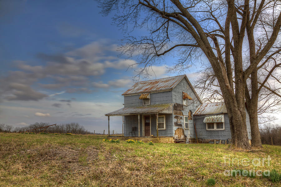 2016 Photograph - House Under A Tree by Larry Braun