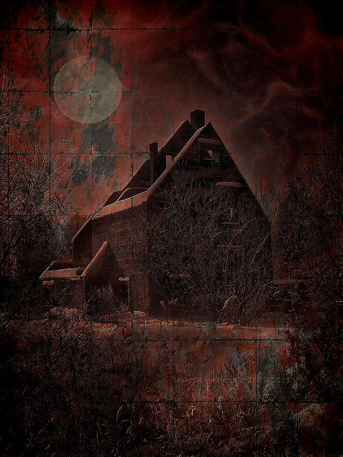 House Digital Art - House With A Story To Tell by Mimulux patricia no No