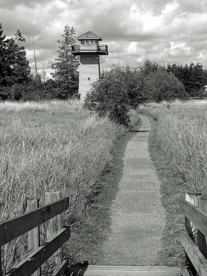Lighthouse Photograph - Hovander Tower by Matthew Adair
