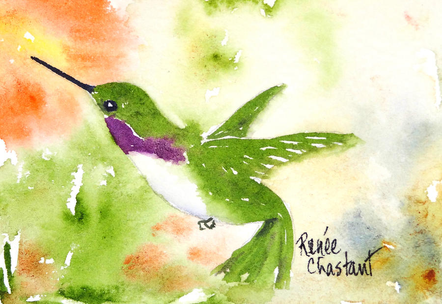 Hummingbird Painting - Hovering Costa II by Renee Chastant