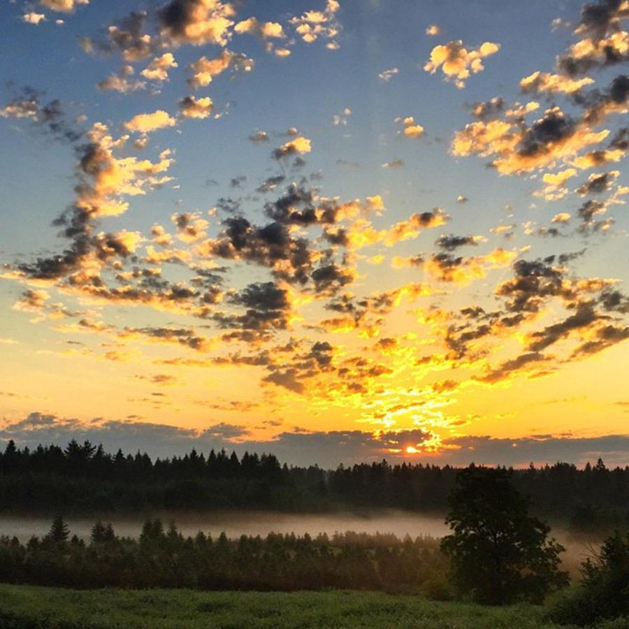 Sunrise Photograph - How Can You Not Have A Good Day When by Blenda Studio