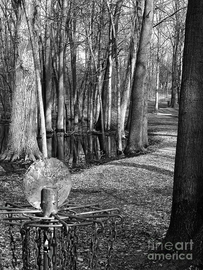 Disc Golf Photograph - Hudson Mills Disc Golf by Phil Perkins