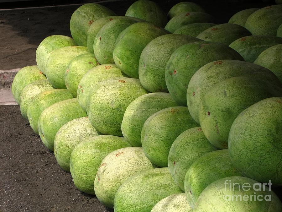 Huge Photograph - Huge Watermelons by Yali Shi