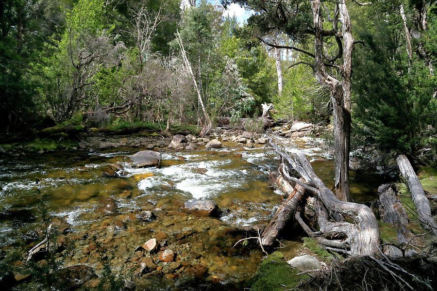 Hugel Photograph - Hugel River by Nicholas Blackwell
