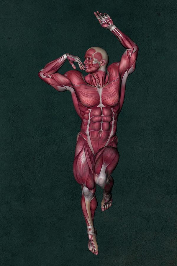 Human Anatomy Mixed Media - Human Anatomy 13 by Barroa Artworks