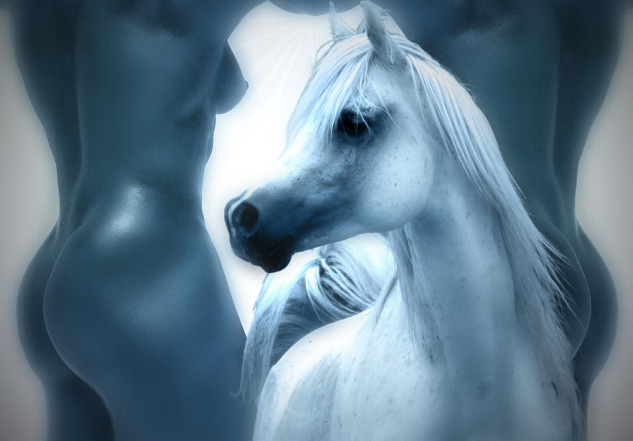 Act Man Photograph - Human And Arabian Horse Beauty by ELA-EquusArt