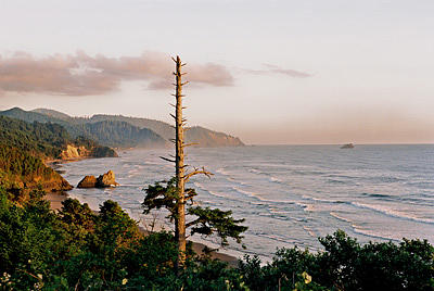 Landscape Photograph - Humbug Point by Gene Mace