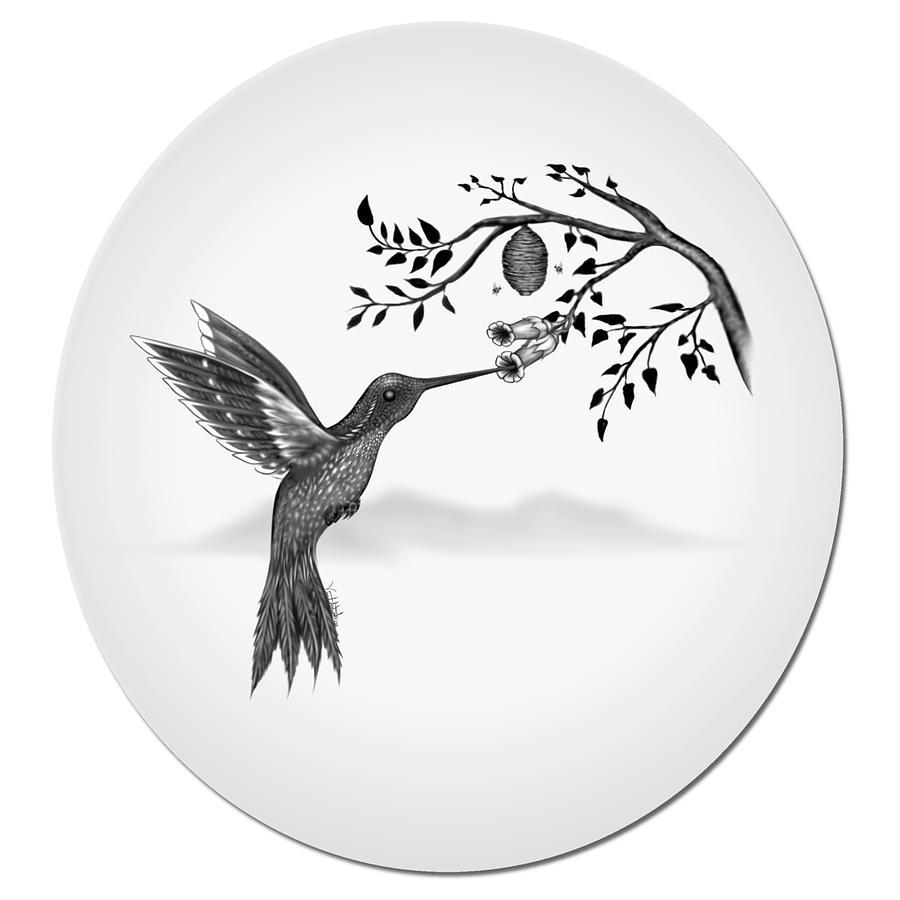Hummingbird Digital Art - Hummingbird on Oval by Vincent Autenrieb