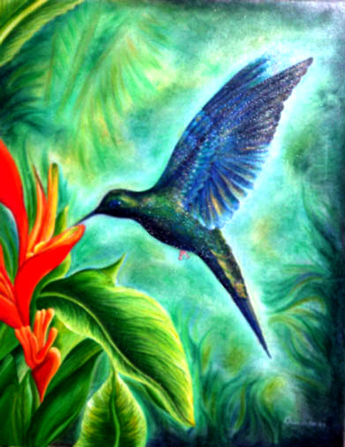 Humming Bird  by Owen Lafon