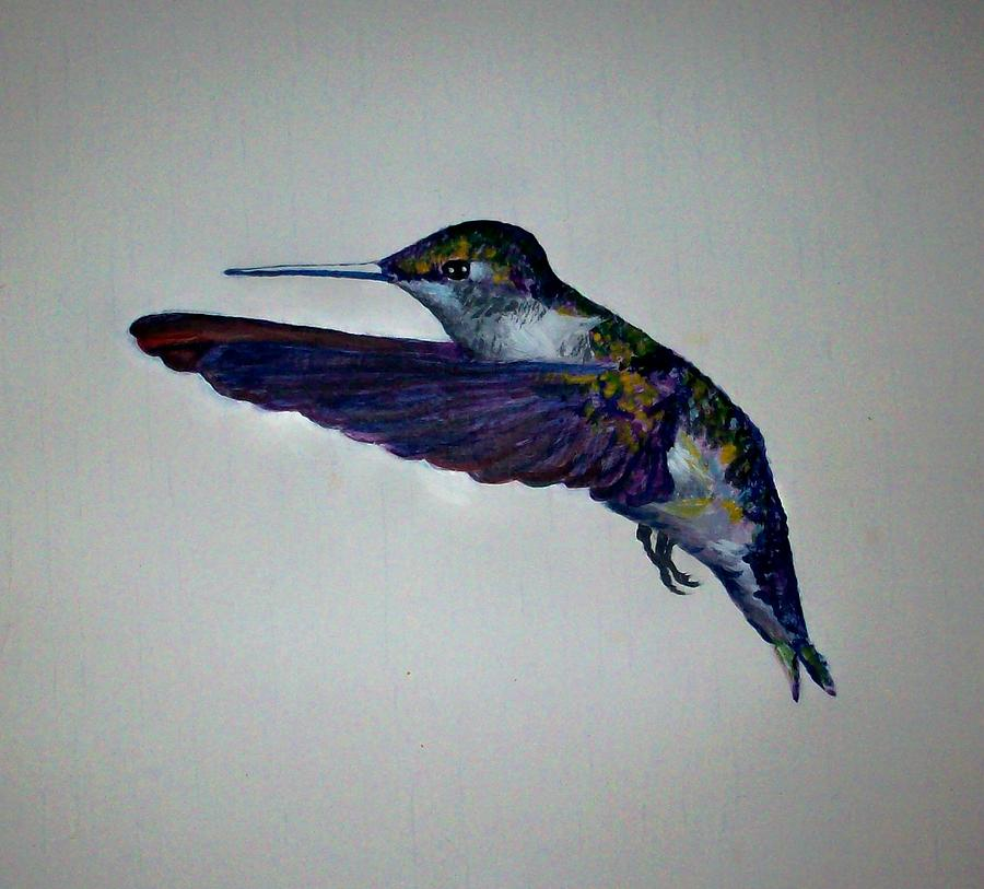 Bird Painting - Hummingbird 2 by Ted Hammer