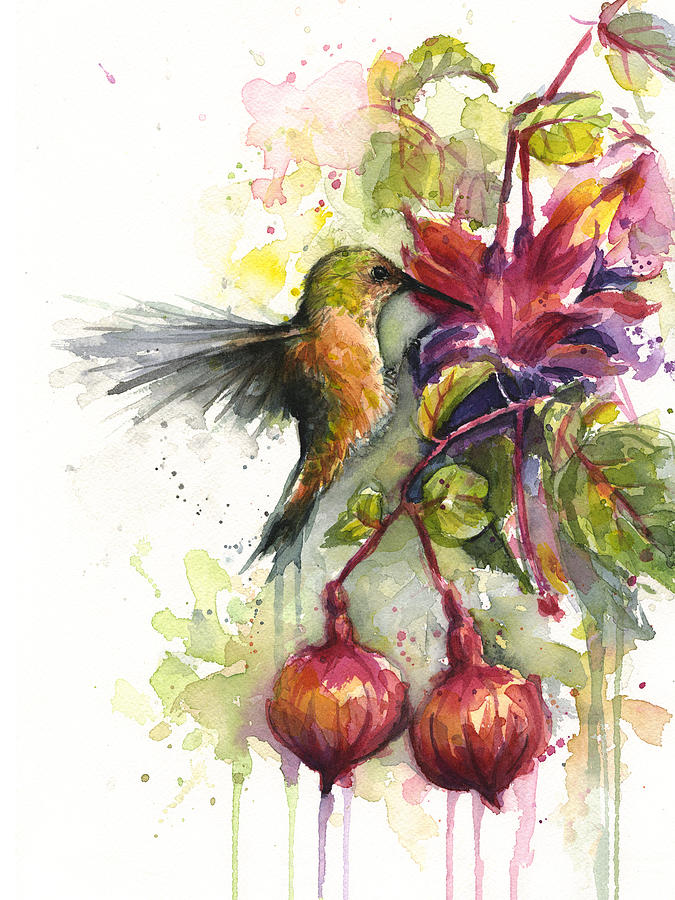 Hummingbird Painting - Hummingbird and Fuchsia by Olga Shvartsur