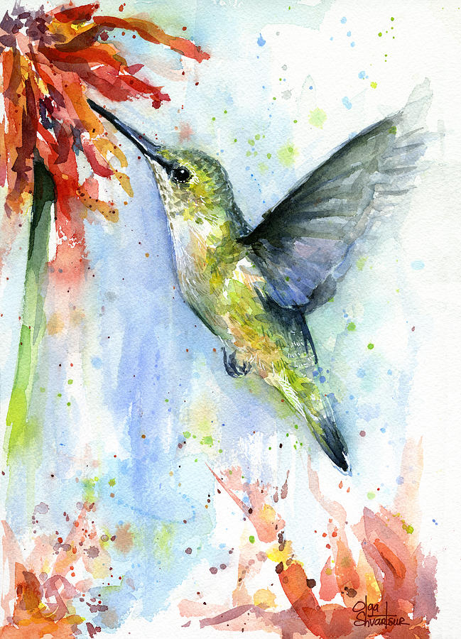 Watercolor Painting - Hummingbird and Red Flower Watercolor by Olga Shvartsur