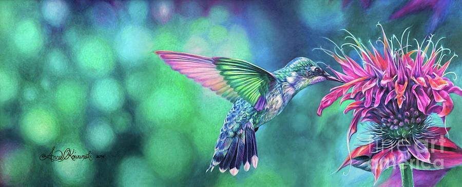 Bird Drawing - Hummingbird by Anne Koivumaki - Fine Art Anne