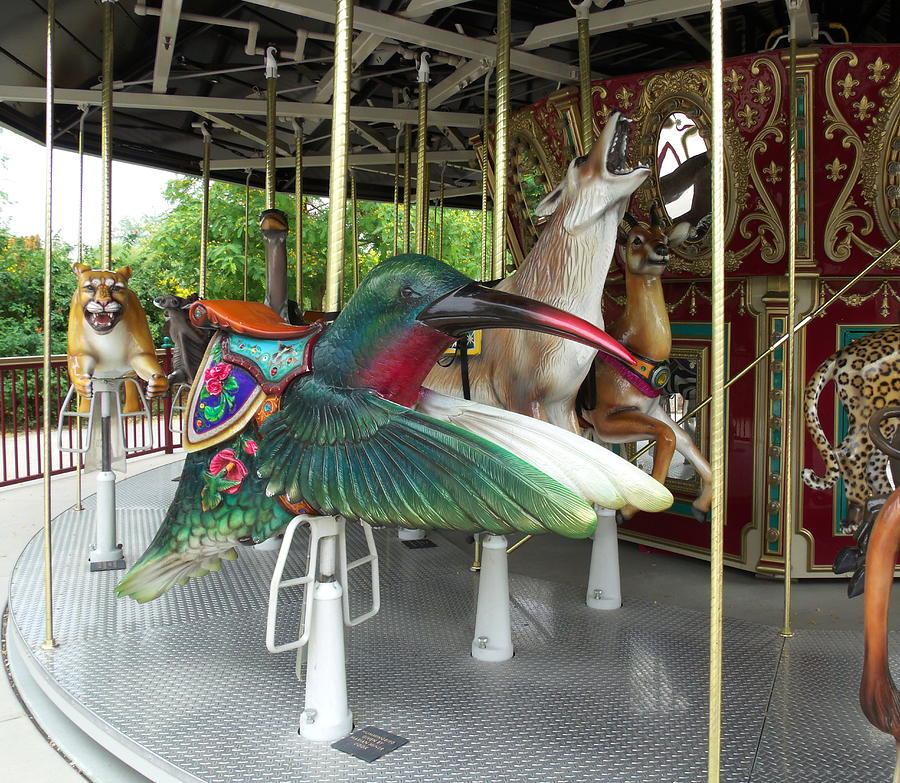 Childhood Photograph - Hummingbird On Carousel by Colleen Cornelius