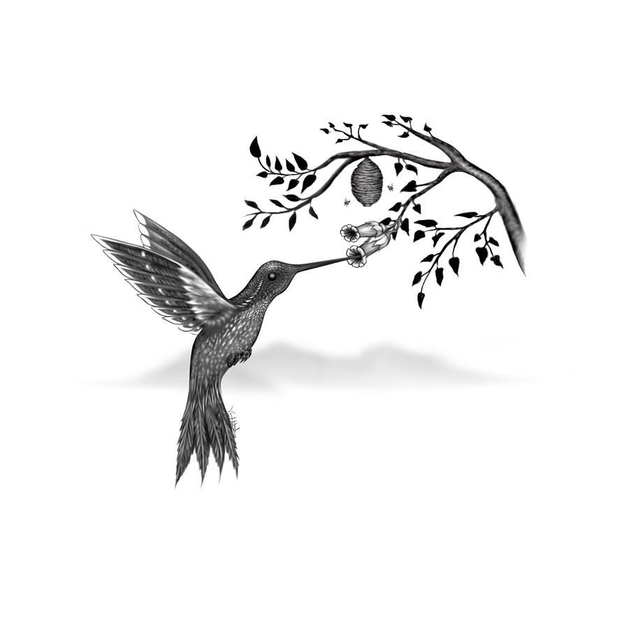 Hummingbird Digital Art - Hummingbird by Vincent Autenrieb