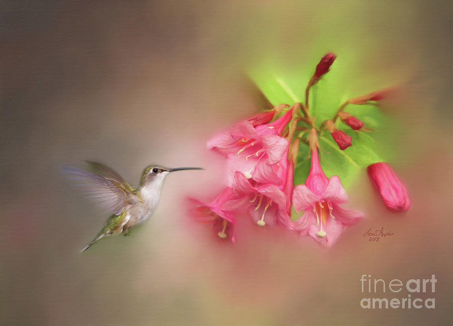 Hummer Digital Art - Hummingbird With Flowers by Lena Auxier