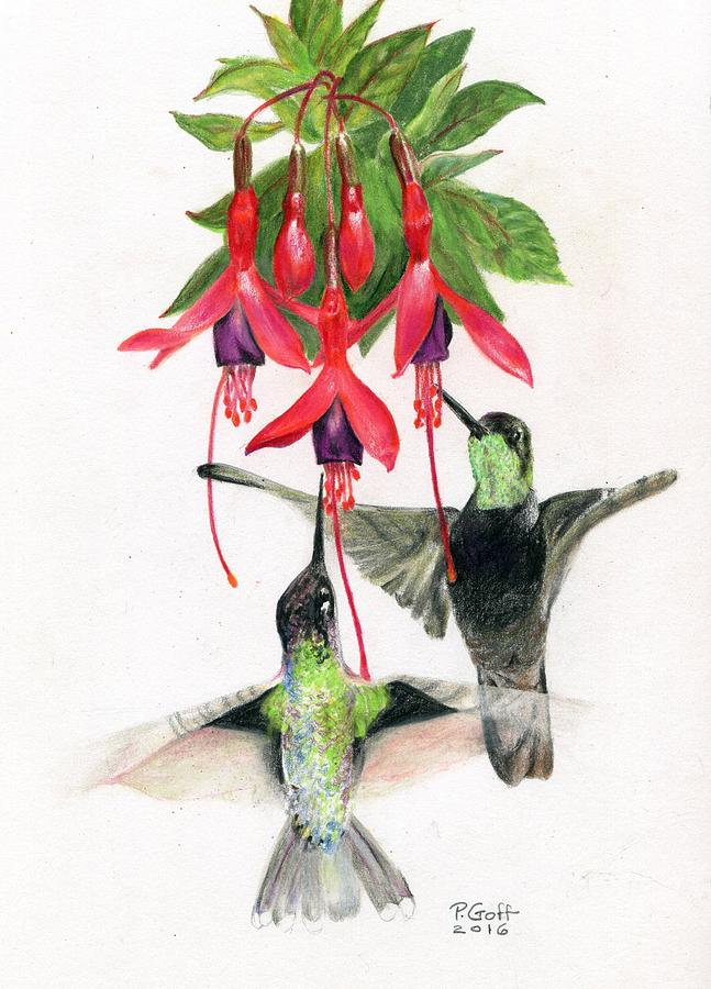 Hummingbirds and Fuchsia by Penrith Goff