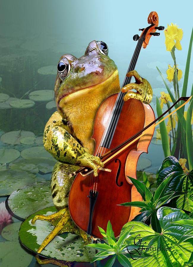 Humorous Scene Frog Playing Cello In Lily Pond Painting