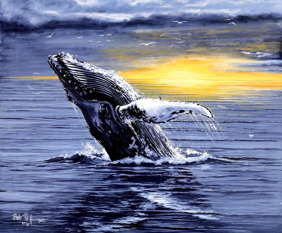 Mamals Painting - Humpback Whale Breaching by Bob Patterson
