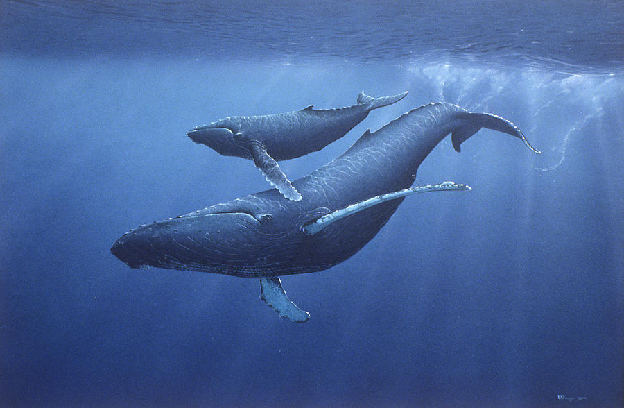 Whale Painting - Humpbacks by Eric Wilson