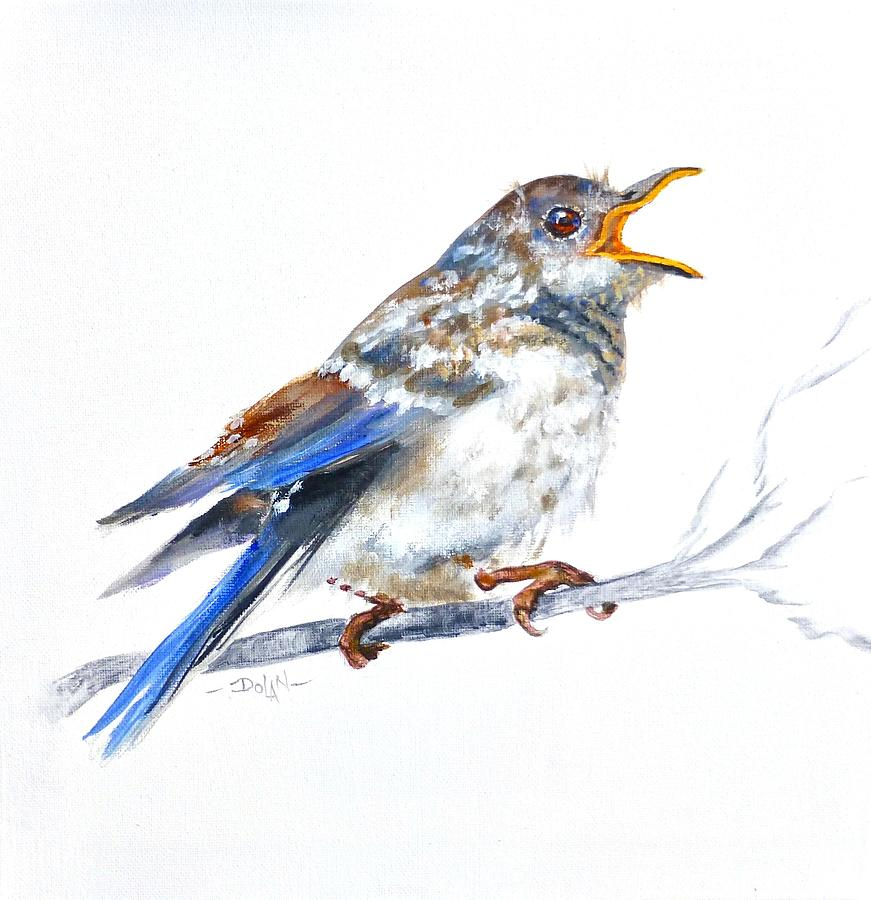 Hungry Fledgling Blue Bird by Pat Dolan