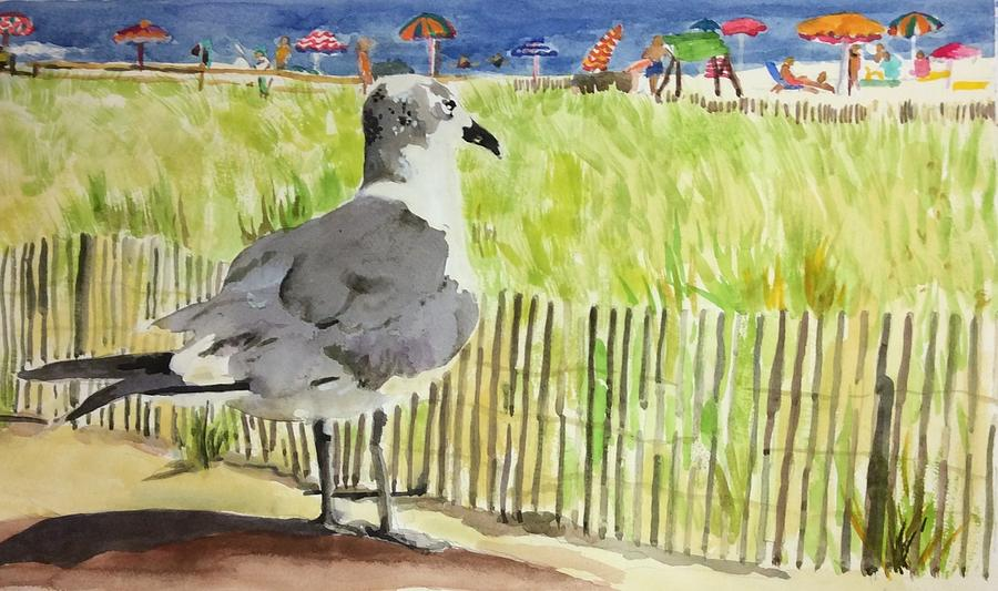 Hungry Seagull by Judith Scull
