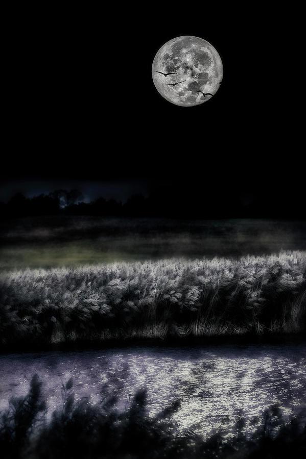Artistic Photograph - Hunters Moon by Garett Gabriel