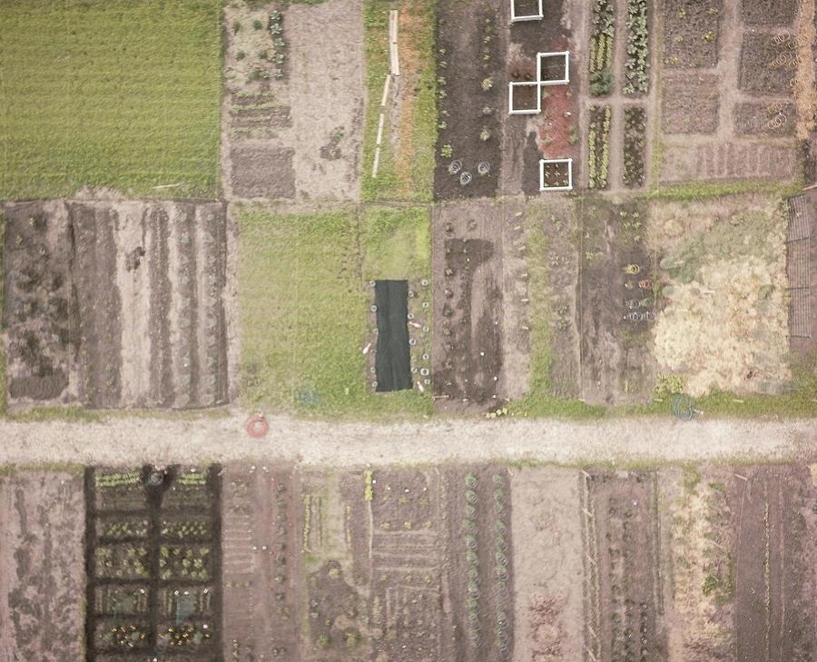 Huntley Farming Photograph