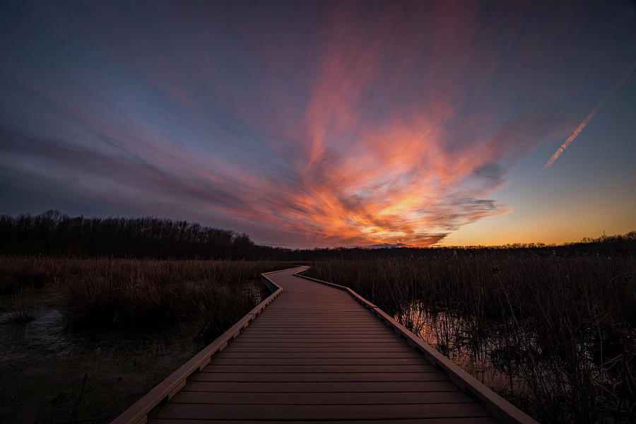 Alexandria Photograph - Huntley Meadows Sunset by Michael Donahue