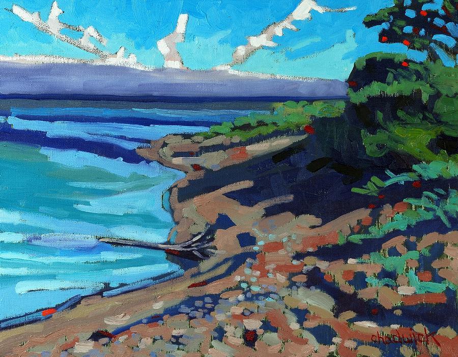 Beach Painting - Huron Shore Shadows by Phil Chadwick