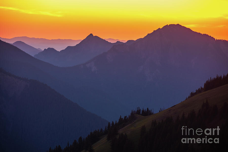 Olympic Mountains Photograph - Hurricane Ridge Sunset Layers by Mike Reid
