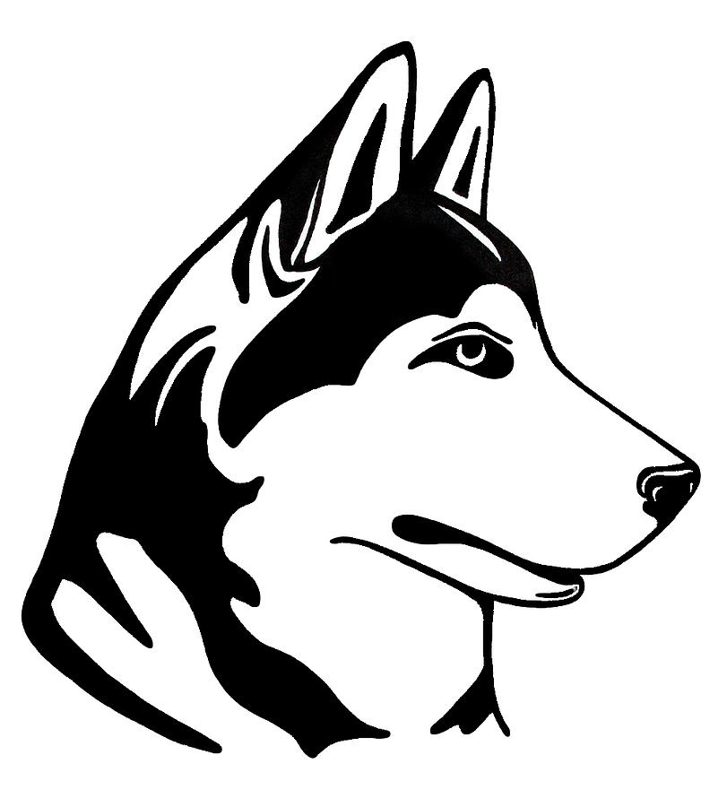 Husky Coloring Pages Online