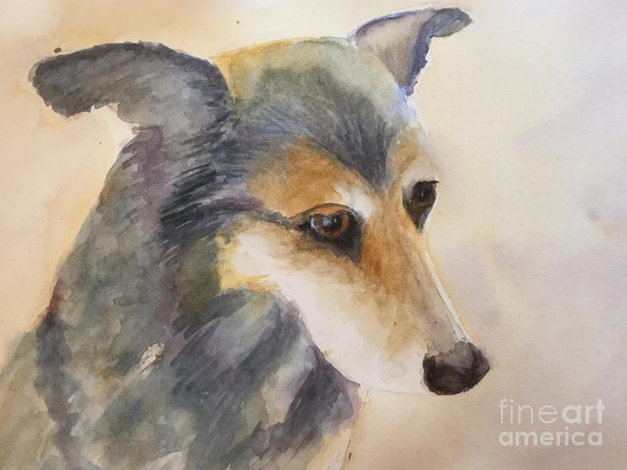 Husky Dog Painting - Husky Mix by Yohana Knobloch