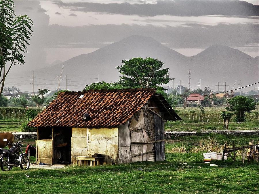 Hut In Balinese Padi Field Digital Art By Maurice Gold